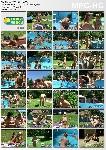 Merry Pool Naturist Freedom 1